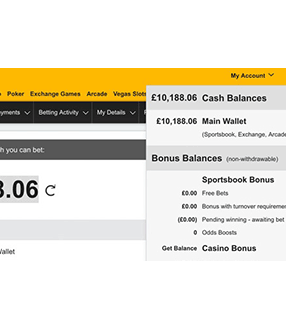 Build My Betting Bank Review